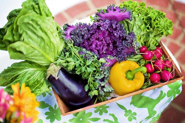 Evde Yetiştirebileceğimiz Sebzeler Nelerdir?